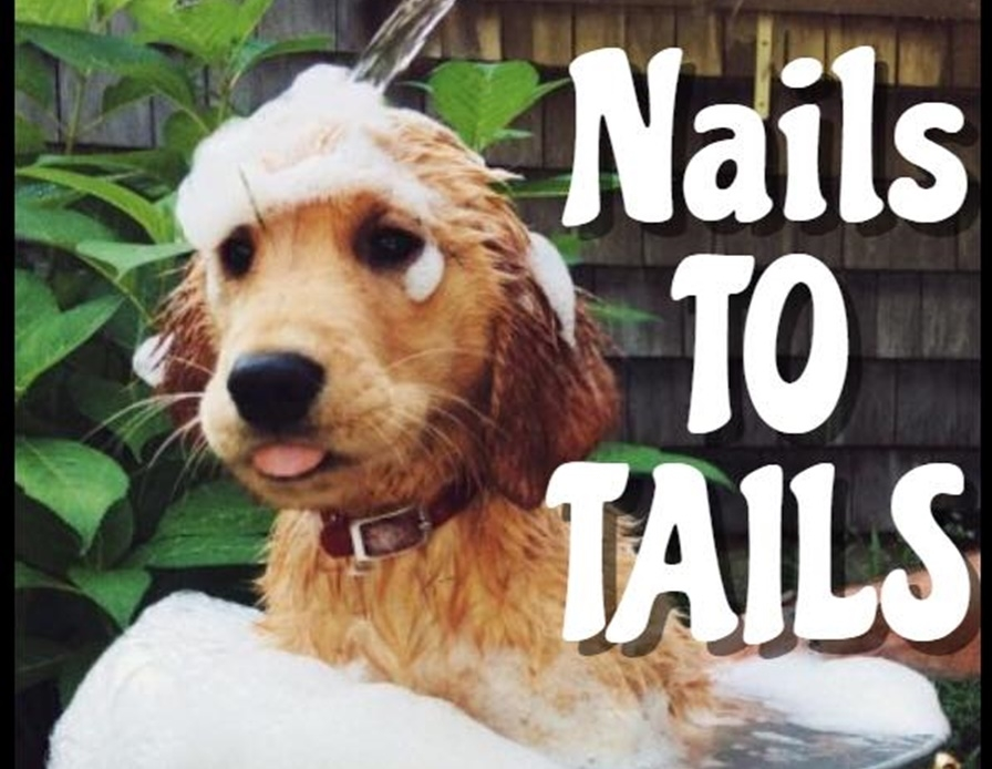NAILS TO TAILS